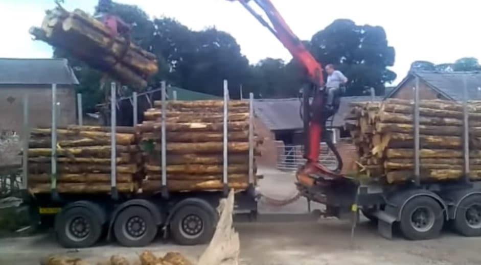 delamere logs timber arrival