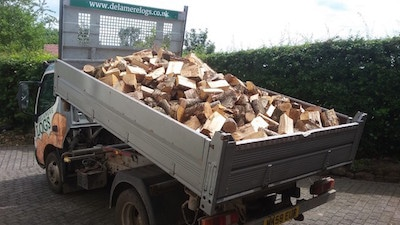 dealmere logs local delivery of logs