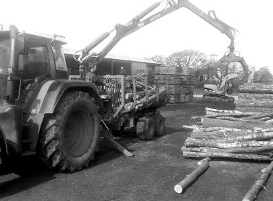 delamere logs unloading trees